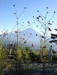 Fujiyoshida - Mont Fuji vu du Tenjoyama