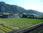 Kyoto - La campagne vue du Shinkansen