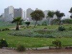 Chemin et immeubles de Miraflores