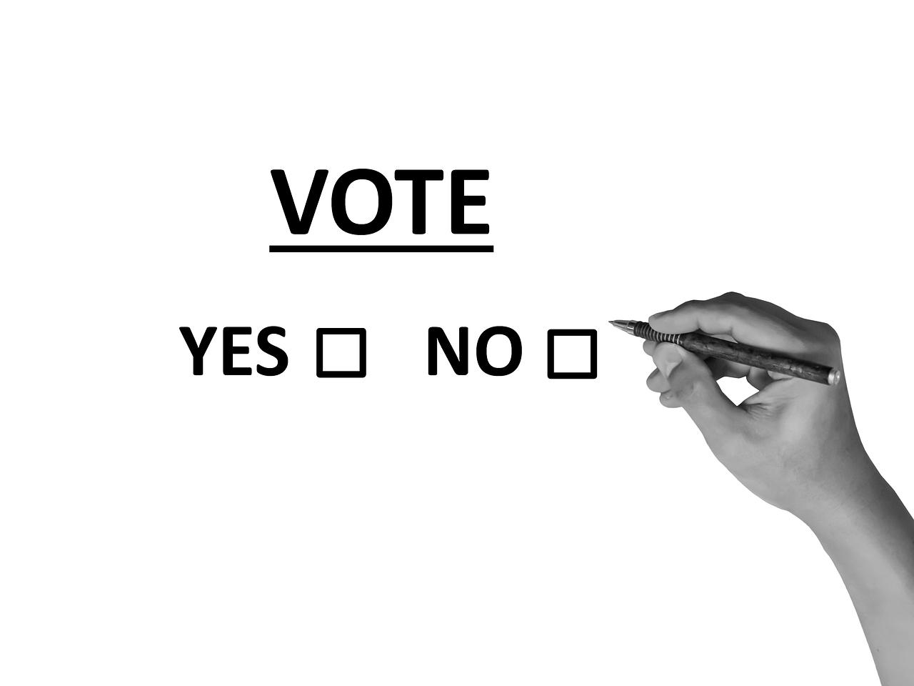 Pourquoi le referendum pour la constitution part perdant.